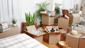 Packers and Movers Borivali West Mumbai